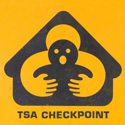 Unofficial TSA Logo